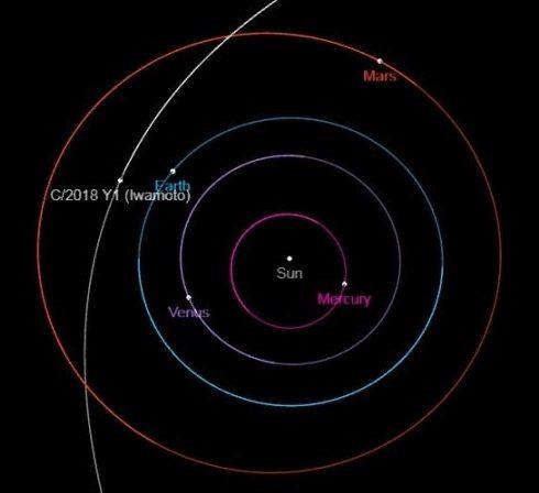 cometa Iwamoto orbita